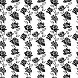 Beautiful  seamless wallpaper with rose flowers, vector illustra