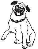 pug black white