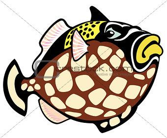 cartoon clown trigger fish