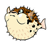 puffer fish