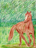 Horse