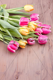 Bouquet of mixed colored tulips