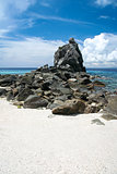 apo island beach negros philippines