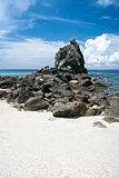 apo island beach negros philippines