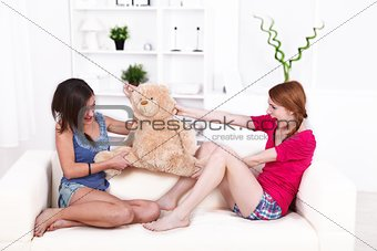 Teddy bear fight