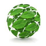 Spring. Sphere from green leaf. 3d