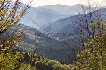 green mountains in the morning sun haze