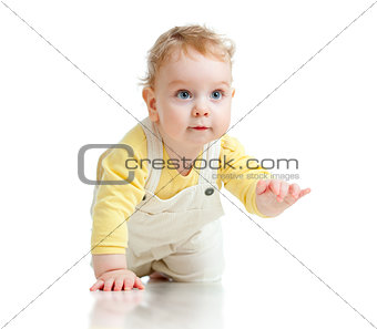 adorable boy crawls on all fours studio shot