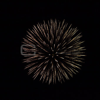Explosion of firework in black sky