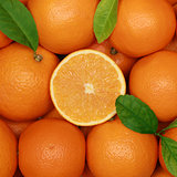 Group of oranges with leaves