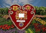 flowers heart