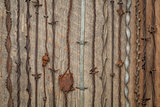 vintage barbed wire