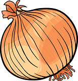 onion vegetable cartoon illustration
