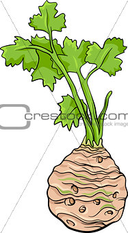 celery vegetable cartoon illustration