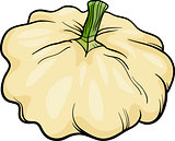 patison vegetable cartoon illustration
