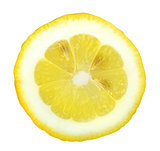 Section of yellow lemon