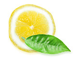 Slice of yellow lemon and green leaf