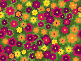 Seamless floral vector pattern