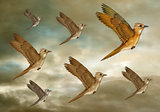 Stylized Flock of Birds