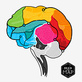 Vector Brain Map