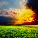 dramatic sunset over green field