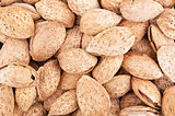 Brown almond background