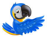 Cute blue and yellow parrot