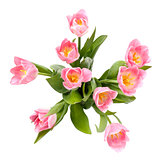 Bouquet of tulips, top view.