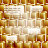 vector infographic template background with golden cubes