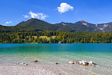 lavender Walchensee in Germany