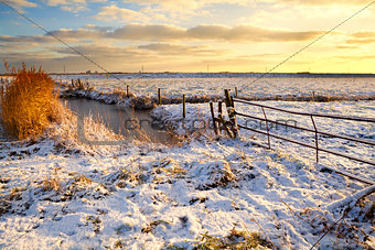 Dutch fields in snow