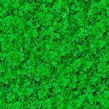 Seamless Texture. Grass.