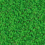 Seamless Texture. Green Meadow Grass.