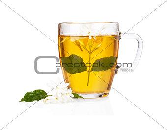 Green tea with jasmine flowers over white