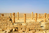 Ancient ruins of town of Avdat in Israel.