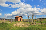 Rural house among vineyards. Piedmont, Italy.