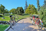 Two bikes on walkway in the park.