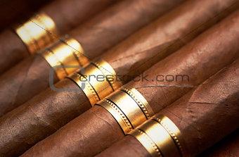 Close up of cigars