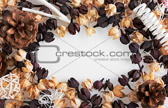 Frame of dried flowers