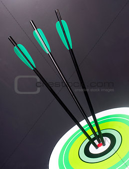 Three Green Black Archery Arrows Hit Round Target Bullseye Cente