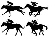 Racing horses