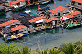 Village on the sea the gypsy. Hainan. China