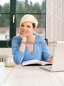 Gorgeous female working on laptop