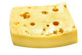 Piece of the cheese on white background