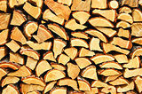 Firewood of the larch