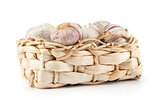 fresh garlic in a basket
