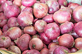 Basket of Red Onions Closeup