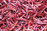 Dried Red Chili Peppers Background