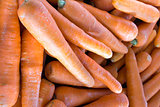 Carrots Closeup Background