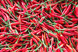 Thai Chili Peppers Background